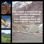 The Andes Mountains & Wine Tour