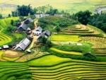 SAPA - CHARMING OF THE RICE TERRACES
