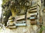 4D/3N Banaue Rice Terraces & Sagada Tour Starting From: PHP 9,200.00  or $227