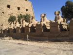 Best of Luxor!  West Bank Antiquities & East Bank Monument Tours