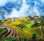 A one-day explorative trip to Longji Terraced Rice Fields