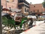 Tangier Local Driver & Tangier Private Tour