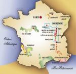 Discover The French Vineyards