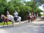 Site Seeing On Horseback Riding Trails